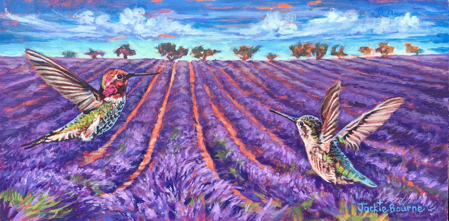 Lavender-fields-hummingbirds-jackie-bourne-art-doterra-essential-oils