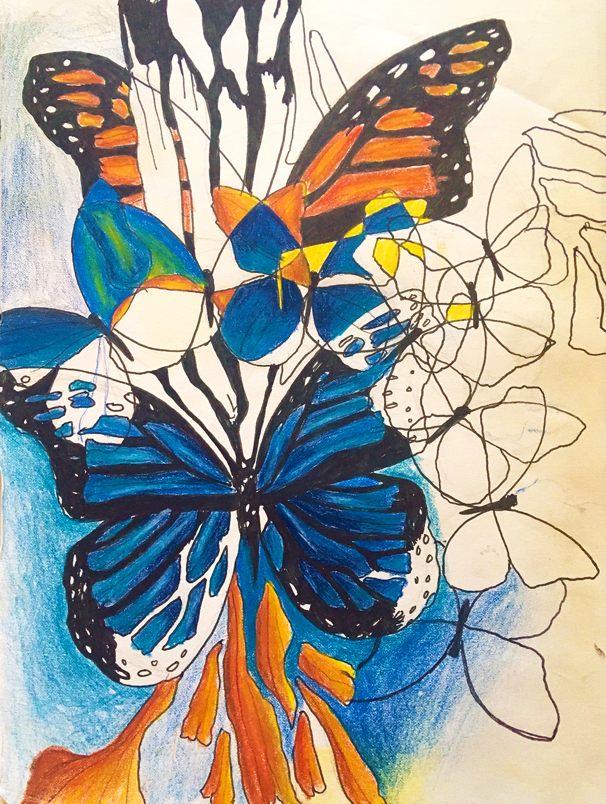 blue-and-orange-butterflies-intersecting-together